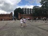ターペー門内を自転車で観光してみた。